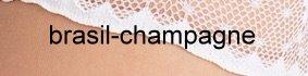 Farbe_brasil-champagne_Falke_invisible-deluxe-mit-spitze